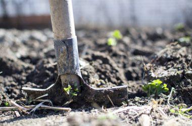 Jaké zahradní nářadí nesmí na zahradě chybět?